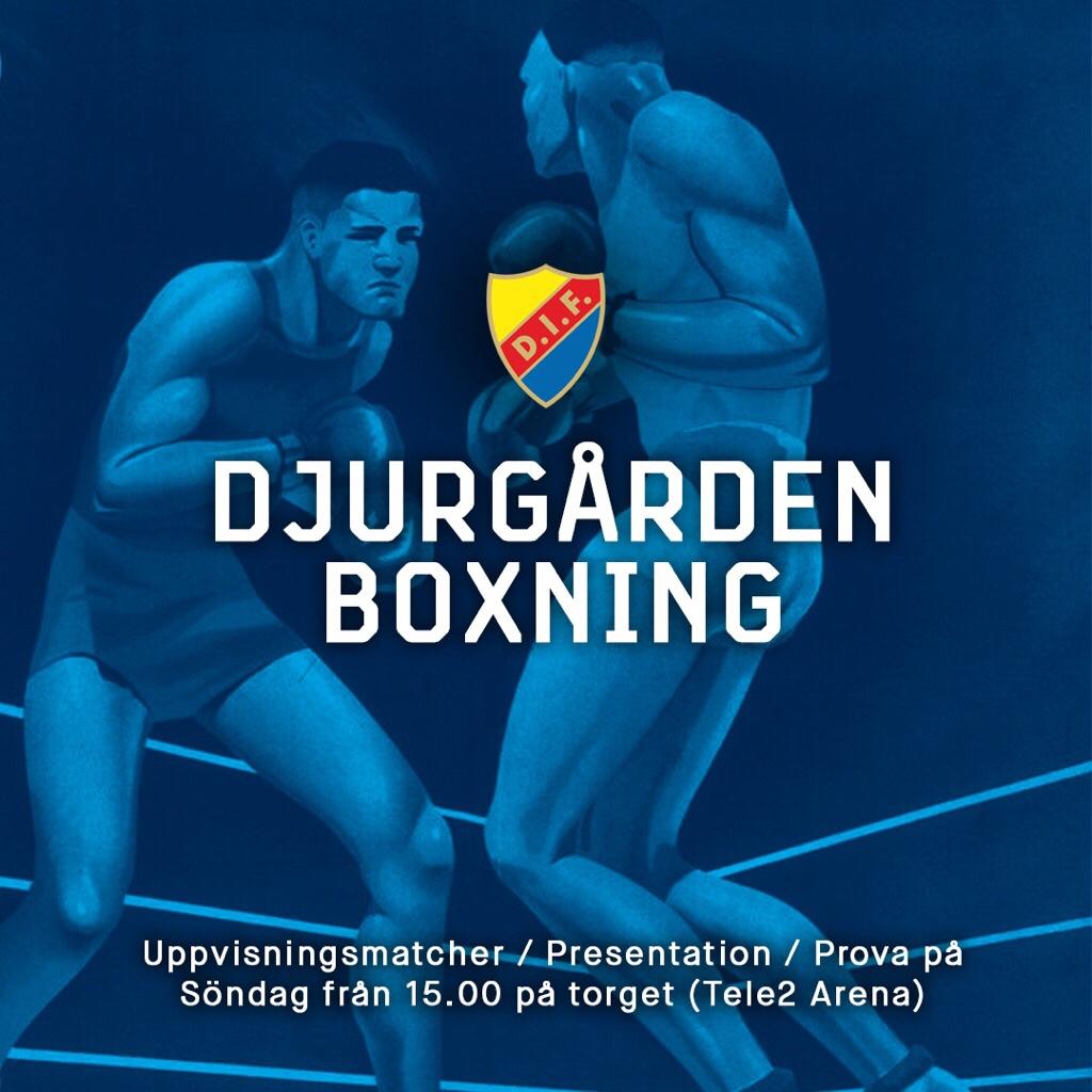 Djurgården Boxning visar upp sig på Tele2-Arena nu på söndag!