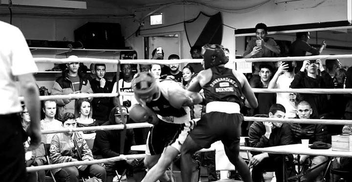 Missa inte – Boxningstävling hos Djurgården Boxning nu på lördag!