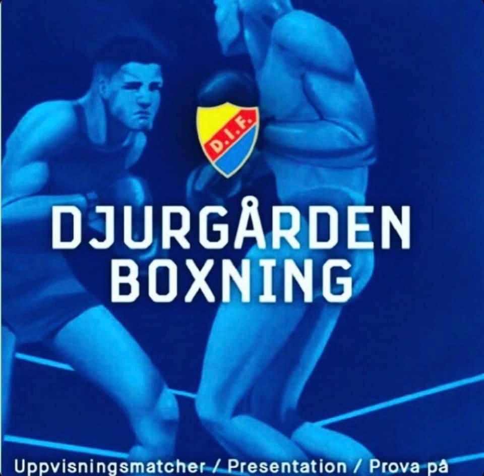 Besök DIF Boxning på Tele 2 arena