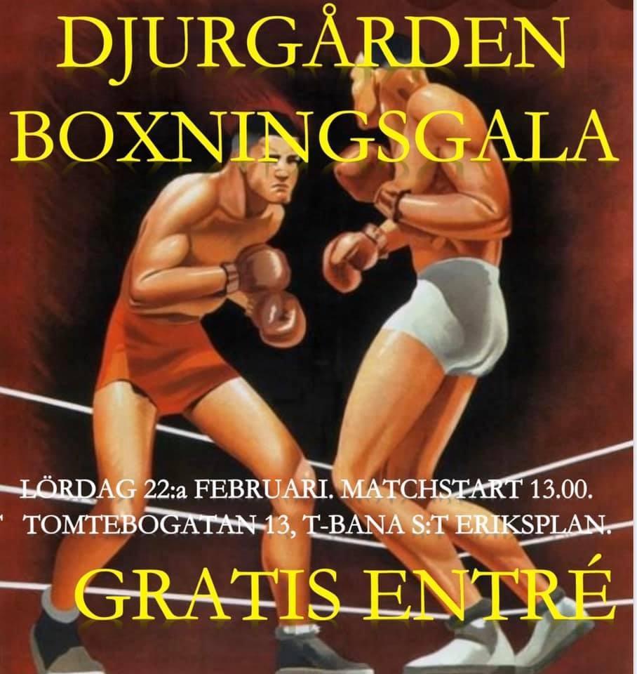 Årets första tävling hos Djurgården Boxning